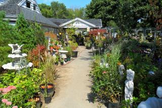 Specialty Landscape Nursery