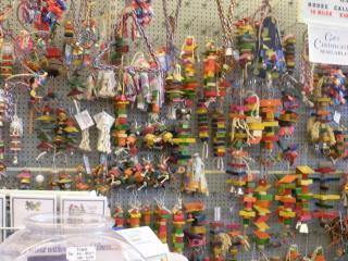 Exotic Bird Store