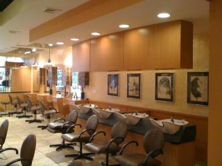 Businesses For Sale-Businesses For Sale-Upscale Hair Salon-Buy a Business