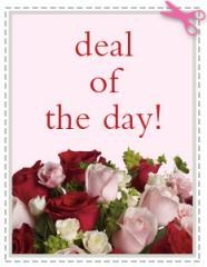 Businesses For Sale-Businesses For Sale-Flower Gift Shoppe-Buy a Business