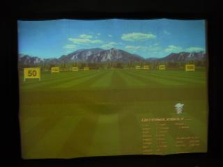 Simulated Golf Pract...