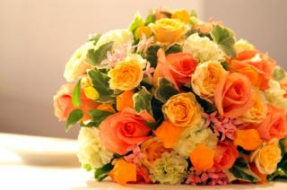 Florist For Sale in Norfolk County, MA