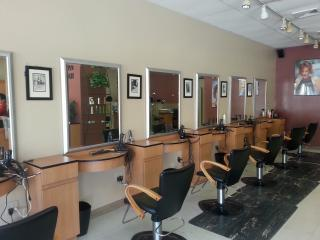 Businesses For Sale-Businesses For Sale-Outstanding Hair Salon-Buy a Business