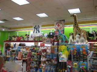 Businesses For Sale-Businesses For Sale-Unique Toy Pet Store-Buy a Business
