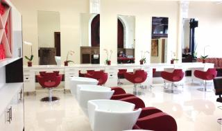 Businesses For Sale-Businesses For Sale-Beautiful New Salon-Buy a Business