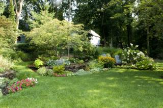 Landscaping & Yard Services
