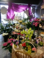 Beautiful Florist Sh...
