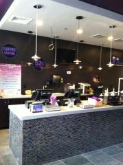 Businesses For Sale-Businesses For Sale-Frozen Yogurt-Buy a Business