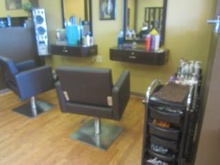 Businesses For Sale-Businesses For Sale-Beautiful Hair and Nail Salon-Buy a Business