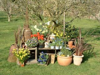 Retail Garden Center and Landscape Business