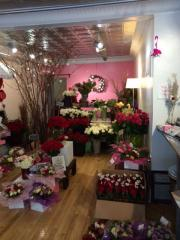 Businesses For Sale-Businesses For Sale-Profitable Floral Store-Buy a Business