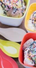 Businesses For Sale-Businesses For Sale-Frozen Yogurt Shop-Buy a Business