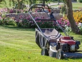 Businesses For Sale-Businesses For Sale-Commercial Lawn/Landsca-Buy a Business