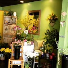 Florist Shop In Prime Location