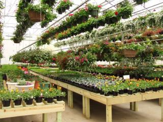 Garden Center w/Property-Tolland County, CT