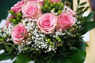 Established Florist For Sale
