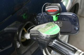 Gasoline Serv