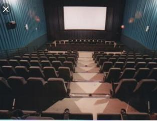 2 Cinemas 1000 seats