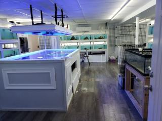 Aquatics Store