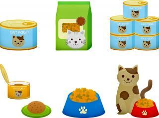 Wholesale Pet Supply