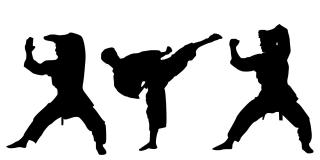 Martial Arts Studio for Sale in Suffolk County, NY