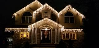 Holiday Light Decor
